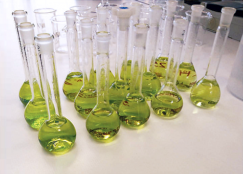 Chlorophyll Extract